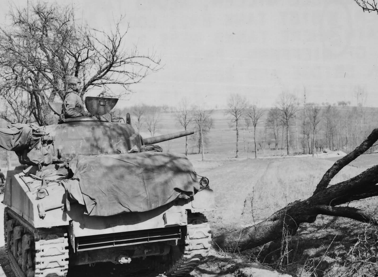761st_Tank_Battalion_M4_Sherman_Supporting_the_103rd_ID_Nieffern_France_1945